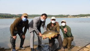 17 kiloluk dev sazan balığını Belediye Başkanı Şahin gölete bıraktı