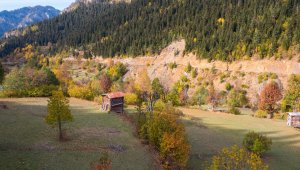 Artvin'den sonbahar manzaraları