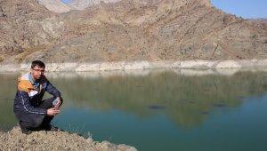 Ayvalı Barajı'nda balıklar kümeleşti