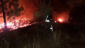 Kabak Koyu'ndaki yangında çok sayıda bungalov kül oldu