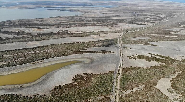 Kızılırmak Deltası'nda korkutan görüntü