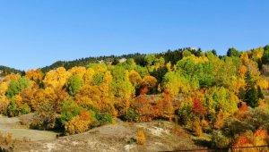 Sakin şehir Şavşat'ın sonbahar güzelliği
