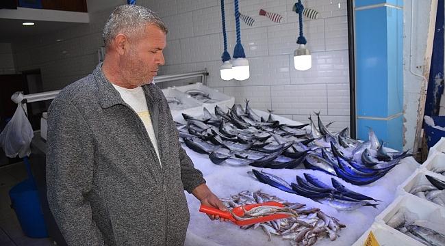Sinop'ta 3 günlük kötü hava balık fiyatlarını 3'e katladı