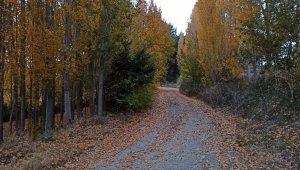 Ermenek'te sonbahar manzaraları hayran bıraktı