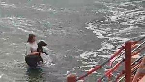 Kıyafetleri ile denize girip köpeği ölmekten kurtardı