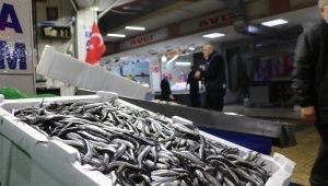 Balık çeşitlendi fiyatlar yükseldi
