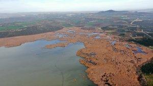 2600 yıllık geçmişi olan Uluabat Gölü'nde kuraklık tehlikesi