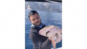 Balıkçıların oltasına 1,5 metrelik köpek balığı takıldı