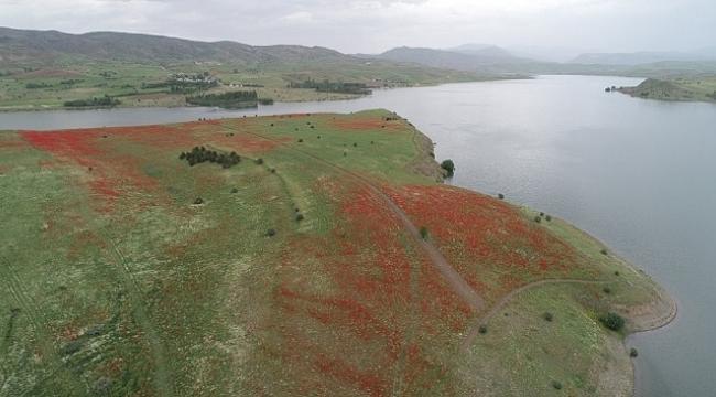 Baraj ortasındaki yarım ada, sahibi tarafından satılığa çıkarıldı