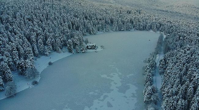 Gölcük Tabiat Parkı'ndaki göl buzla kaplandı