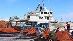 Hamsi avı yasağı 10 gün daha uzatıldı!