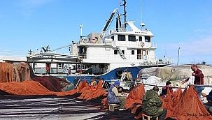 Hamside av yasağı 10 gün daha uzayabilir!