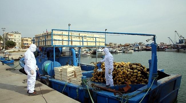 Karaduvar Balıkçı Barınağındaki balıkçı tekneleri dezenfekte edildi