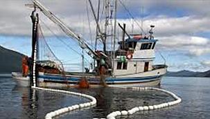 Urla İcra Dairesi'nden satılık balıkçı gemileri!