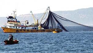 Mavi Yüzgeçli Orkinos avcılığı özel izinle yapılabilecek!