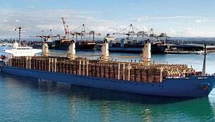 Rusya'da yeni ihracat yasakları: Tomruk ihracatı sekteye uğrayacak!