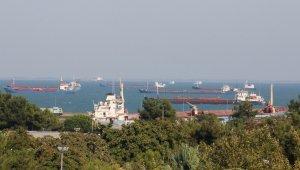 Samsun'dan Uzak Doğu ve Arabistan yarımadasına deniz salyangozu ihracatı