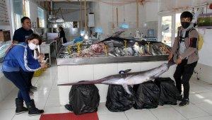 3,5 metrelik kılıç balığı görenleri şaşırttı