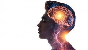Beyin hakkında doğru sanılan 15 yanlış