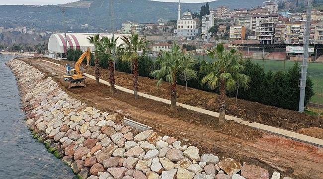 Hereke Sahilini palmiye ağaçları süsleyecek