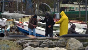 Limanların büyümesi ile av alanları azalan balıkçıklar dertli