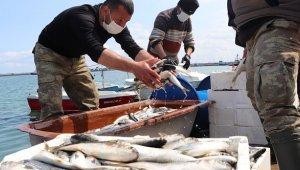 """Balık Satıcıları Odası YK üyesi Balcı: """"Her balıktan balıkçının yüzü güldü"""""""