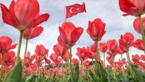 Nevşehir'de bahar güzelliği