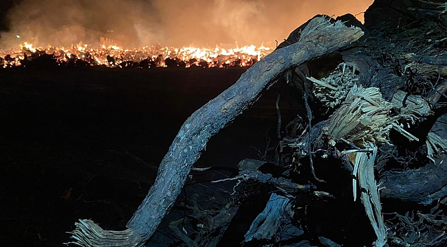 Biyokütle yakıtlı enerji santralindeki yangın 80 bin metrekarelik alanda sürüyor