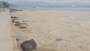 Gemlik Narlı sahilleri beyaza büründü