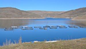 Denizi olmayan Erzurum'da üretilen balıklar ülkenin dört bir yanına gidiyor!