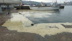 Marmara Denizi Eylem Planı kapsamında bir sanayi tesisinin faaliyetleri durduruldu!