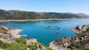 Su ürünleri üretimi 2020'de 785 bin 811 tona geriledi!