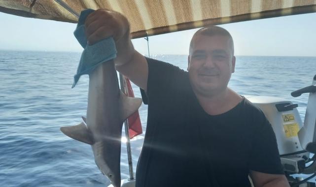 Balıkçı ağına takılan yavru köpek balığı kurtarılarak denize bırakıldı!