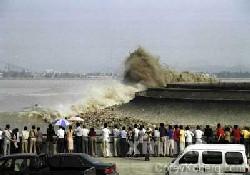 Tsunami tatbikatı gerçek oldu